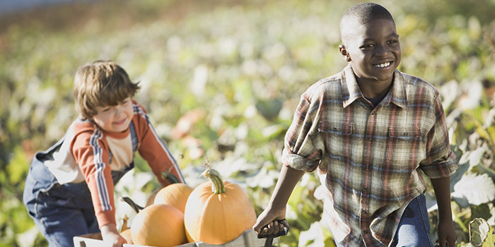 The future role of youth in food security