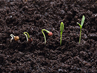 An integrated concept of soil health