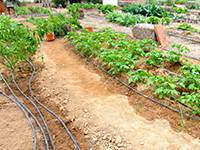 Small-scale drip irrigation systems