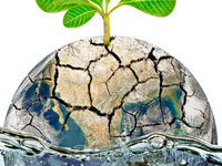 Hash Tag: Importance of Water